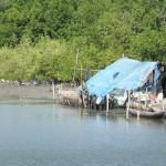 Fishing shack, Casamance River, Senegal