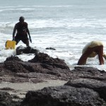 Shell Collectors on the beach, Bucott, Casamance, Senegal
